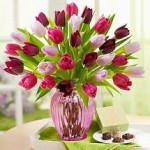 Assorted Tulips In A Pink Vase